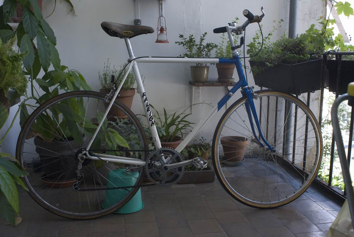 Raleigh Panasonic.jpg