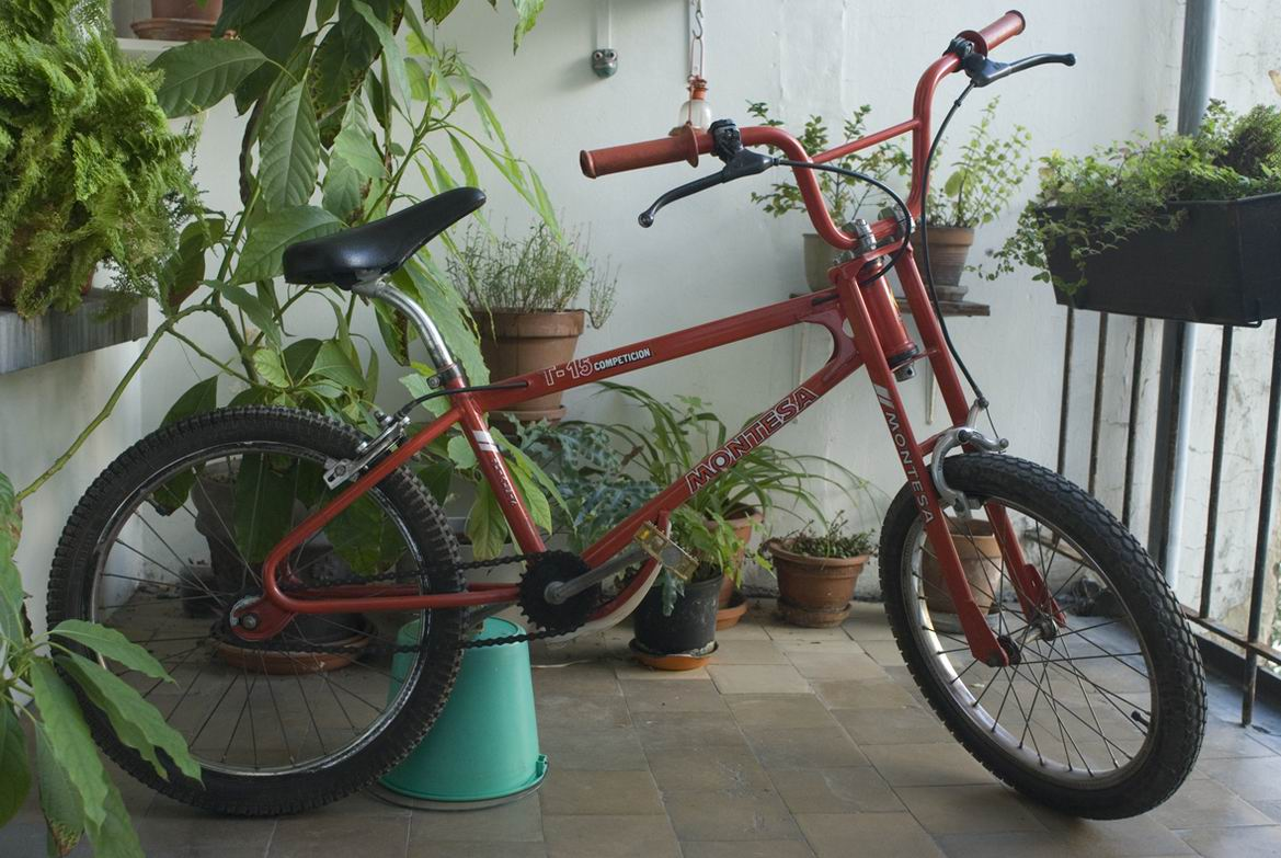 montesa t15 trialsin competicion.jpg
