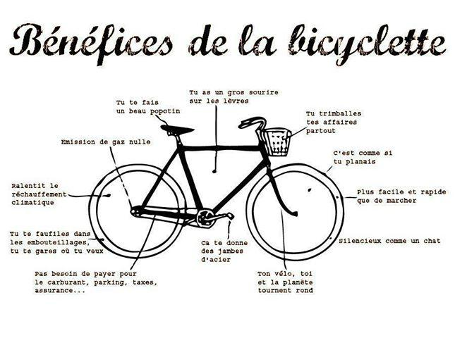 Forum tonton v lo afficher le sujet cycliste de bordeaux - Dessin cycliste humoristique ...