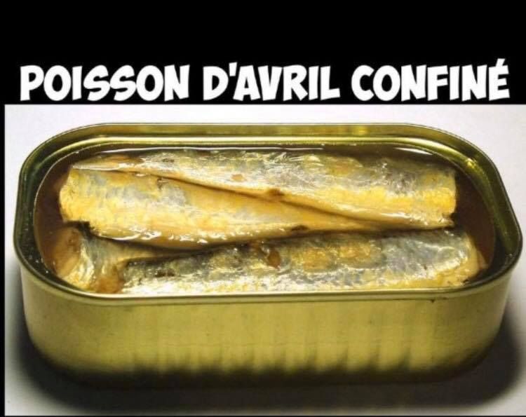 Poisson d'avril confiné.jpg